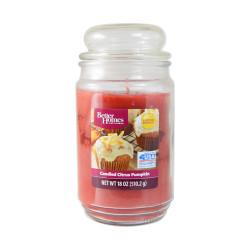 Vonná svíčka, Kandovaný citrus s dýní, 510g