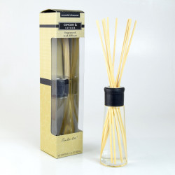 Osvěžovač vzduchu, Difuzér, Essential Elements, Zázvor a citrus, žlutá, 100ml